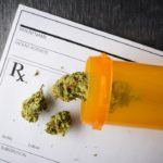 Employment law: Should your employer still test for marijuana?
